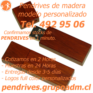 Pendrives Personalizados de madera www.grupoadm.cl Tel. 492 95 06