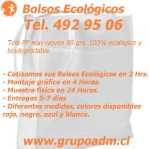 Bolsos Ecológicos con logo Corporativo www.grupoadm.cl Tel. 492 95 06